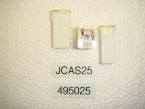 JCAS25