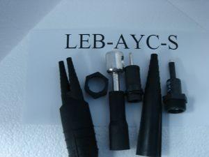 LEB-AYC-S002