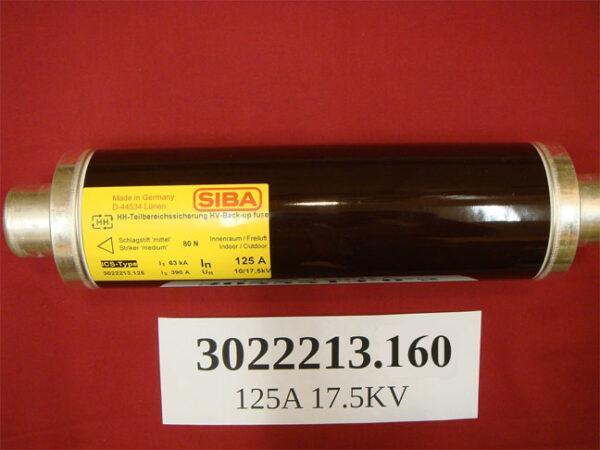 SIBA-302213.125 fuse