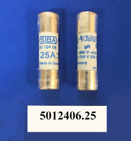 SIBA 5012406.25 fuse